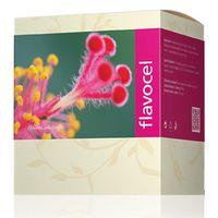 Flavocel Energy 90c